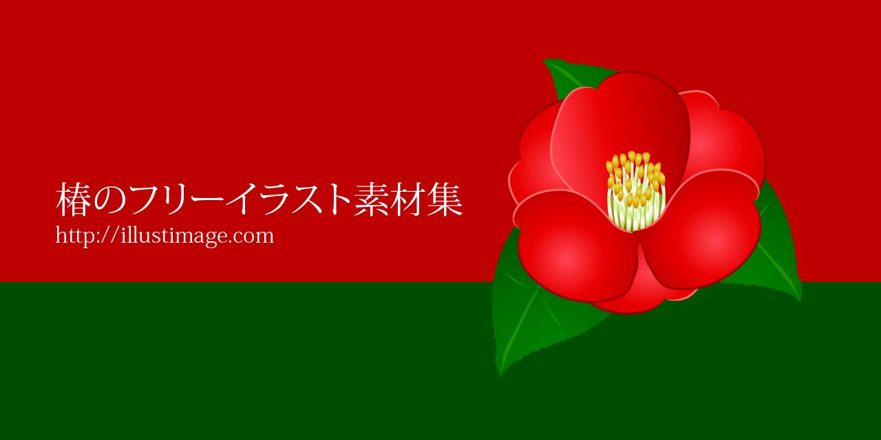 まとめ椿の花の無料イラスト素材集イラストイメージ