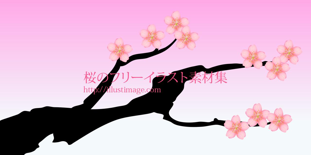 まとめ桜の無料イラスト素材集イラストイメージ