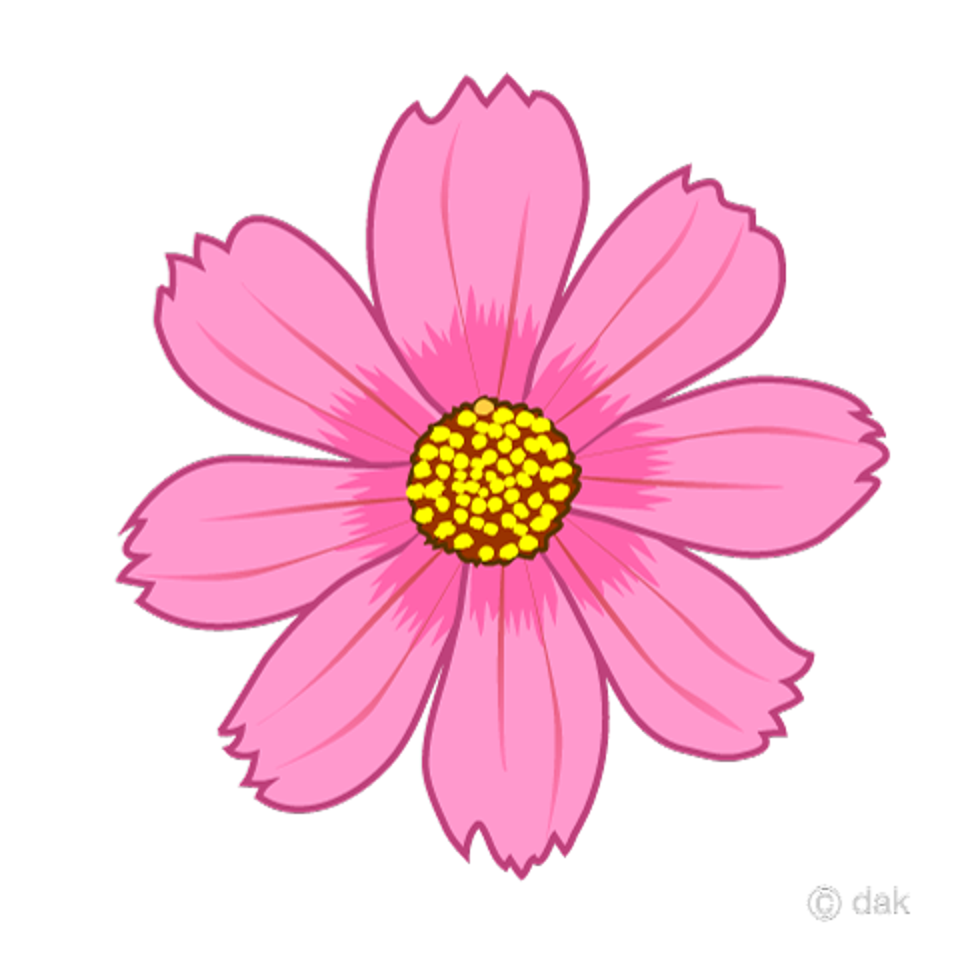 コスモスの花イラストのフリー素材|イラストイメージ