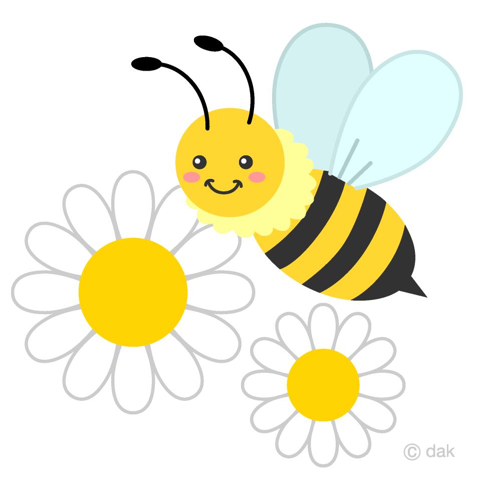 かわいいミツバチとマーガレットの花の無料イラスト素材イラストイメージ