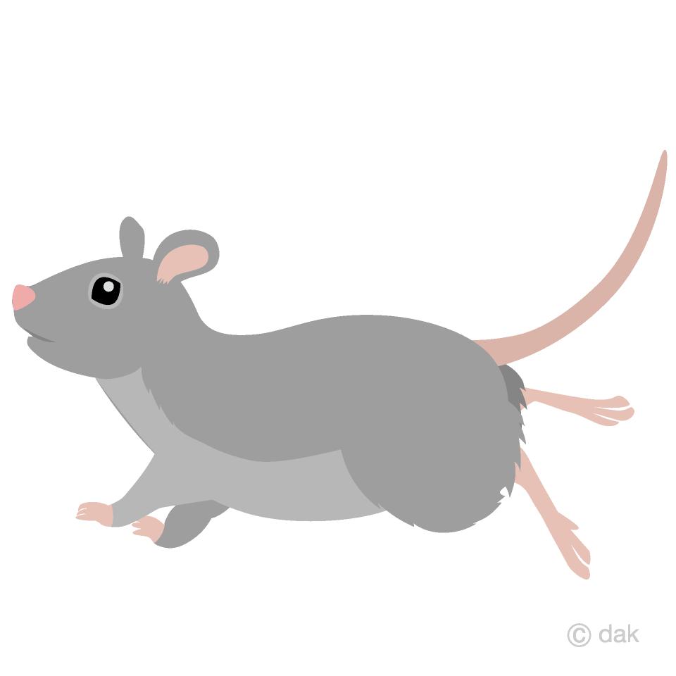 走るネズミ横の無料イラスト素材イラストイメージ