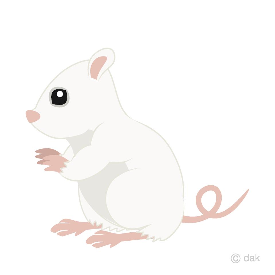 白鼠横の無料イラスト素材イラストイメージ