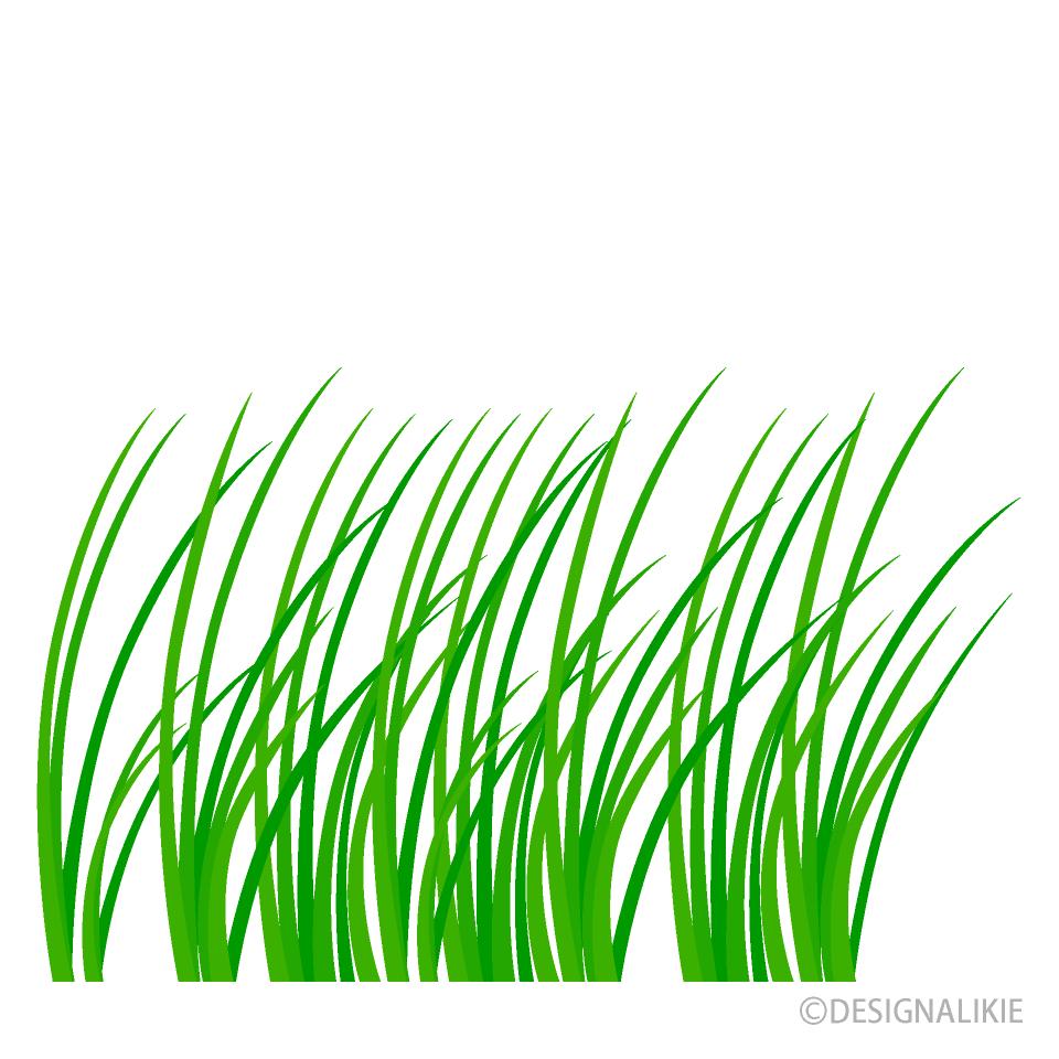 草の無料イラスト素材|イラスト...