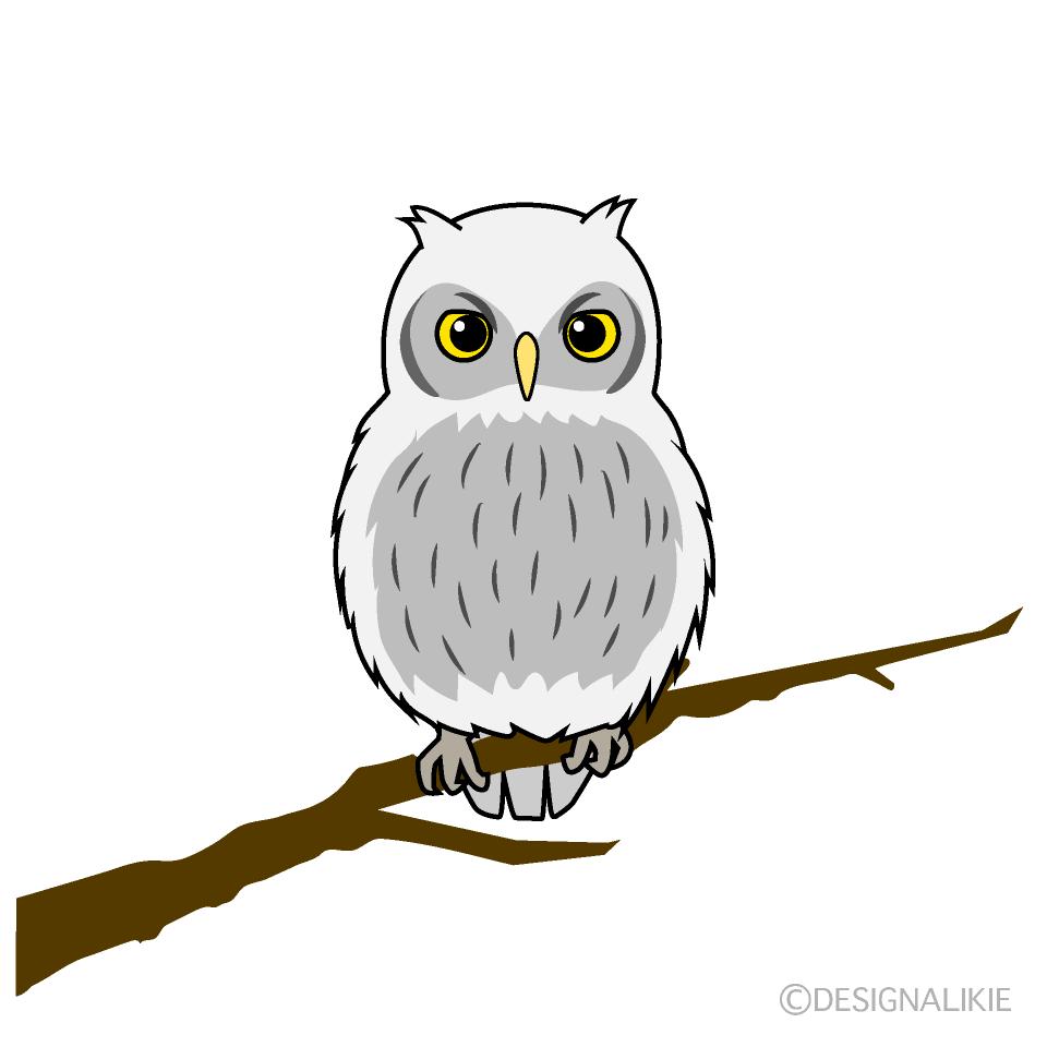 白フクロウの無料イラスト素材イラストイメージ