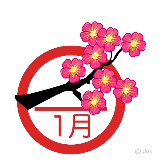 梅の花 1月の無料イラスト素材|イラストイメージ