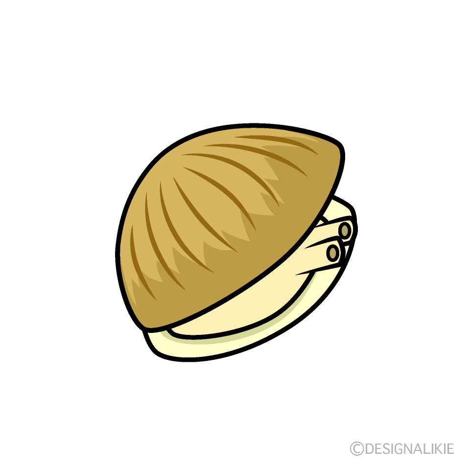 貝の無料イラスト素材イラストイメージ