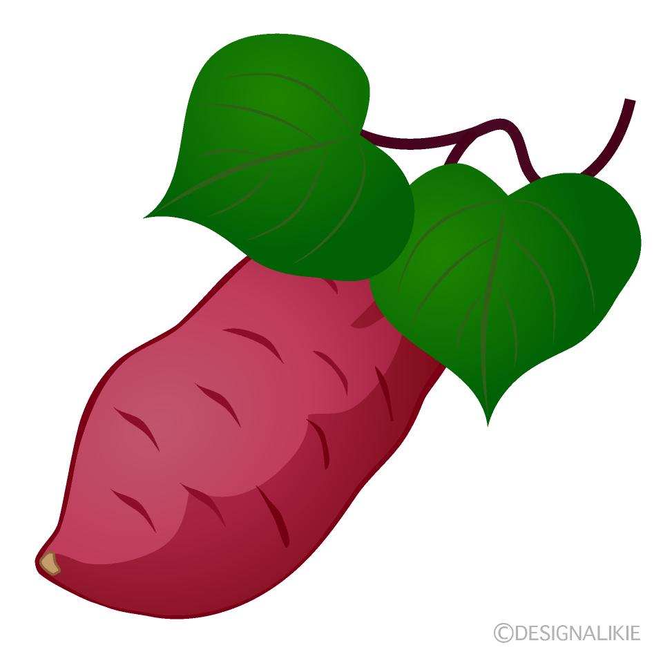 さつまいもと葉っぱの無料イラスト素材 イラストイメージ