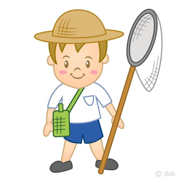 虫取りをする男の子の無料イラスト素材イラストイメージ