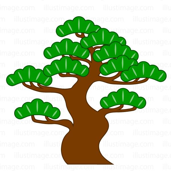 松 の木の無料イラスト素材イラストイメージ