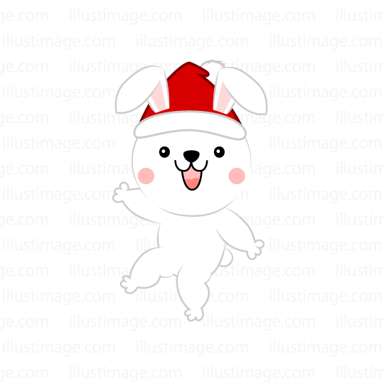 Santa hat rabbit