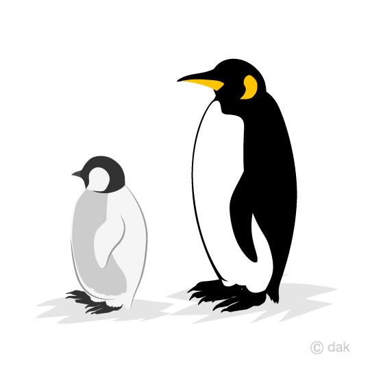 親子のコウテイペンギンの無料イラスト素材イラストイメージ