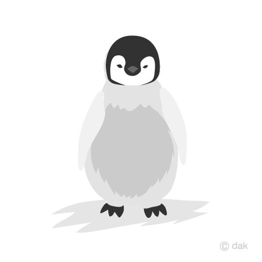 コウテイペンギンの赤ちゃんの無料イラスト素材イラストイメージ