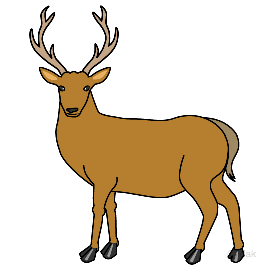 Deer clip art to look back