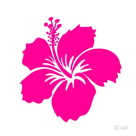 ピンクのハイビスカスの無料イラスト素材イラストイメージ