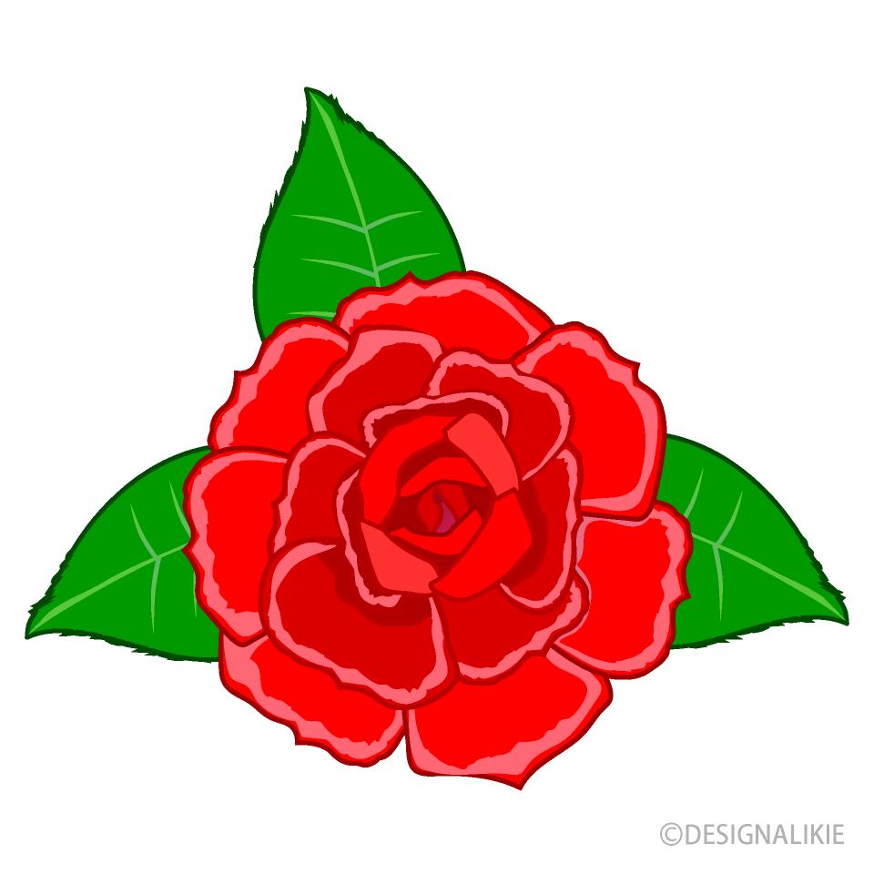 バラの花の無料イラスト素材イラストイメージ