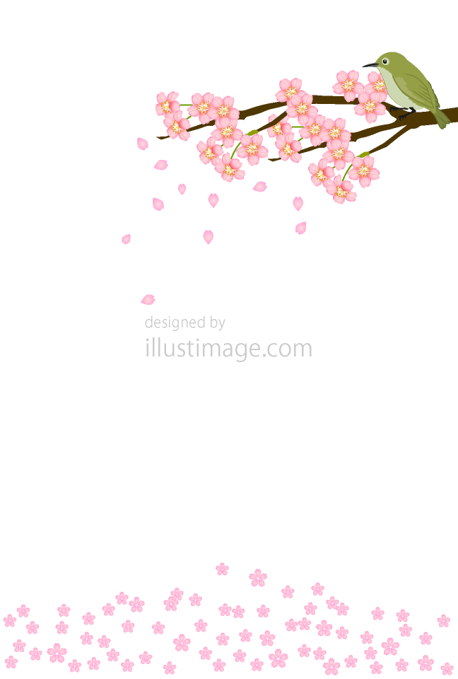 Cherry blossoms and small bird message card