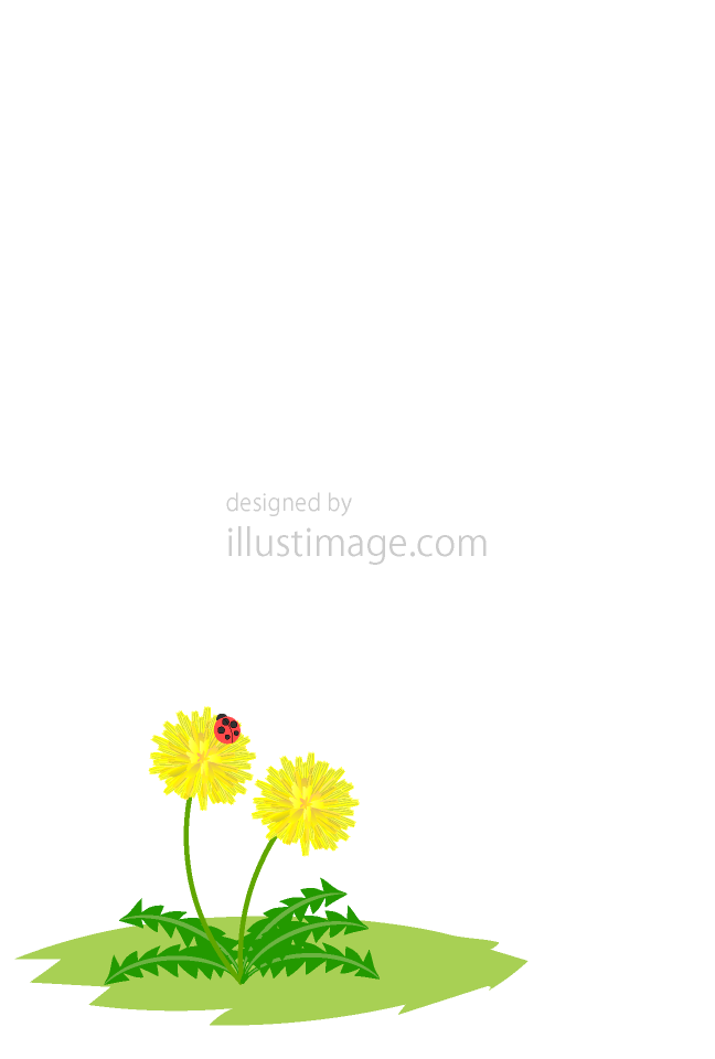 Dandelion flower and ladybug message card