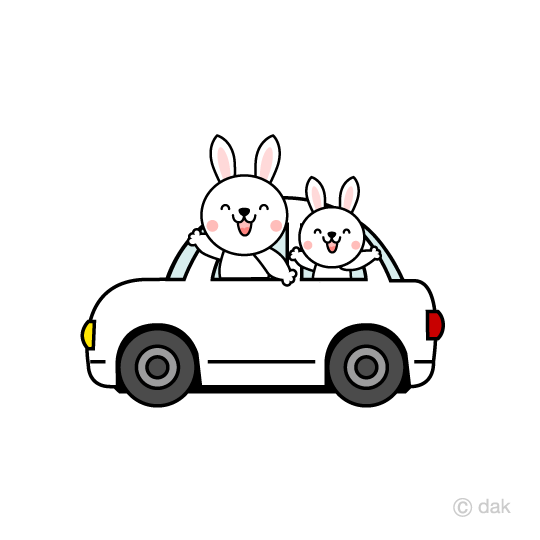 Rabbits to drive by car