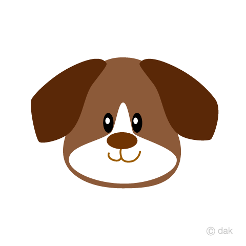 Beagle dog's face