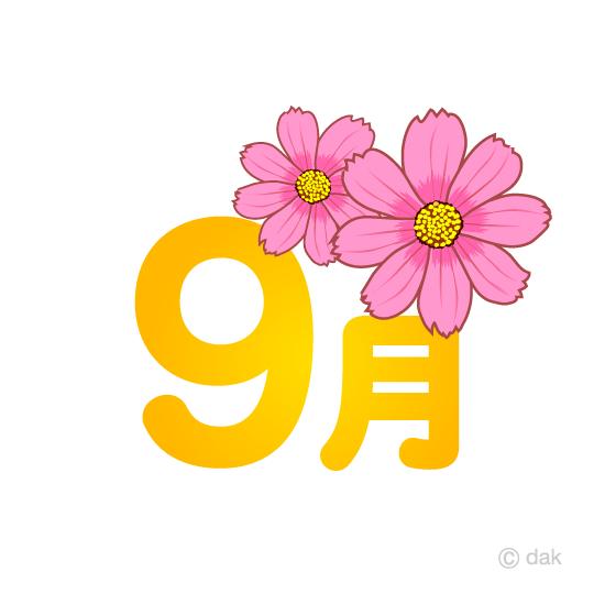 コスモス花の9月文字の無料イラスト素材イラストイメージ