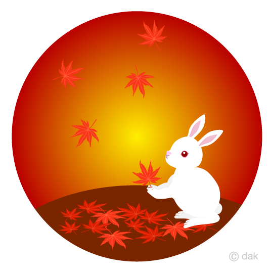 Autumn leaves and rabbits