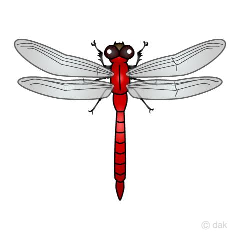 赤とんぼの無料イラスト素材イラストイメージ