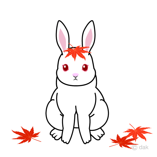 White rabbits with maple leaves