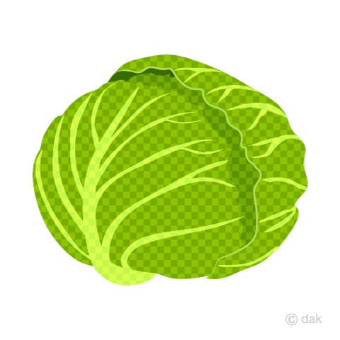 Cabbage (plaid)