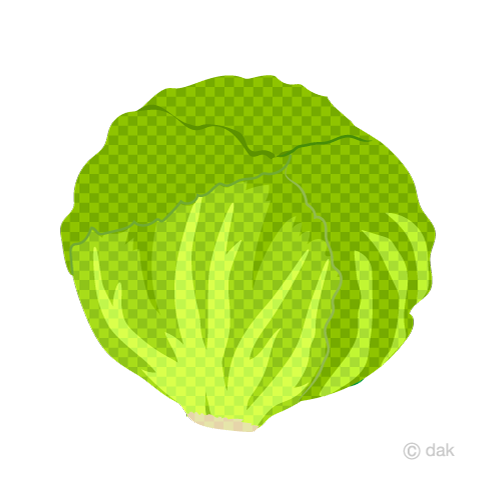 Lettuce (plaid)