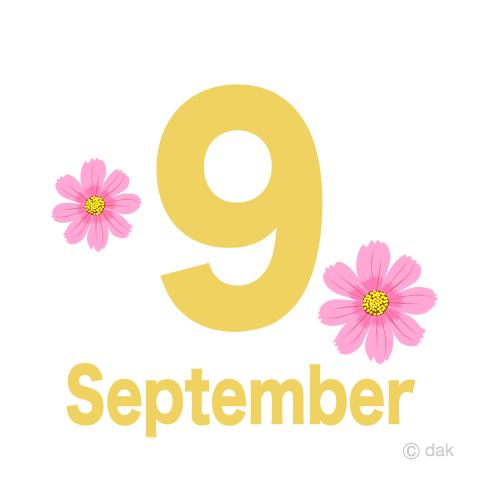 9月コスモスの無料イラスト素材イラストイメージ