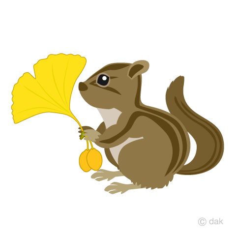 Chipmunk with ginkgo