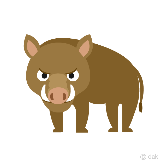 Strong-looking boar