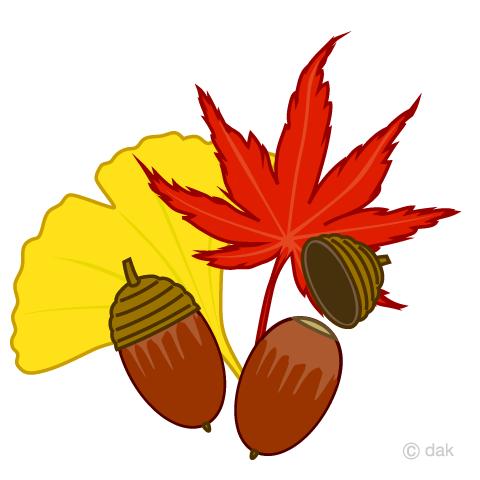 紅葉の秋の無料イラスト素材イラストイメージ