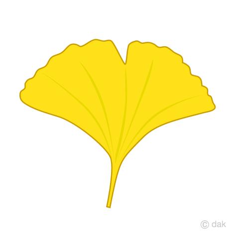 イチョウの葉っぱの無料イラスト素材イラストイメージ