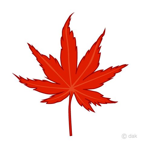もみじの葉っぱの無料イラスト素材イラストイメージ