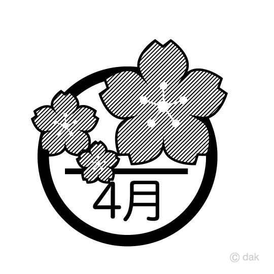 桜の花と4月白黒の無料イラスト素材イラストイメージ