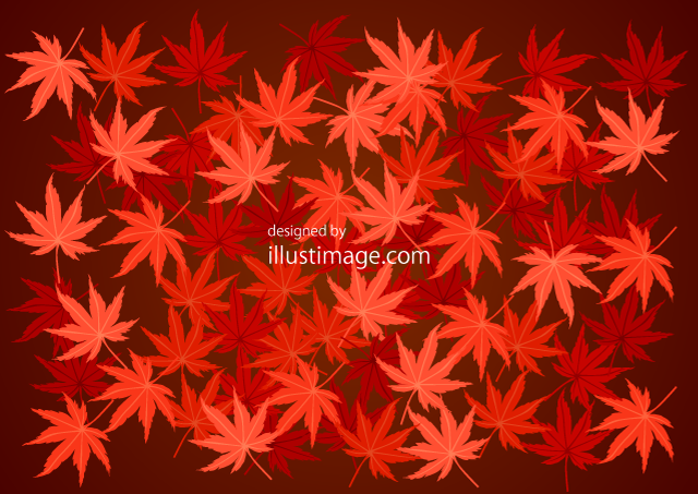 Autumn leaves on one side