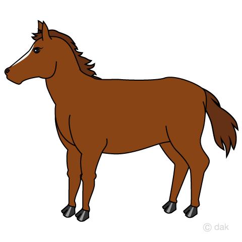 体格の良い馬の無料イラスト素材イラストイメージ
