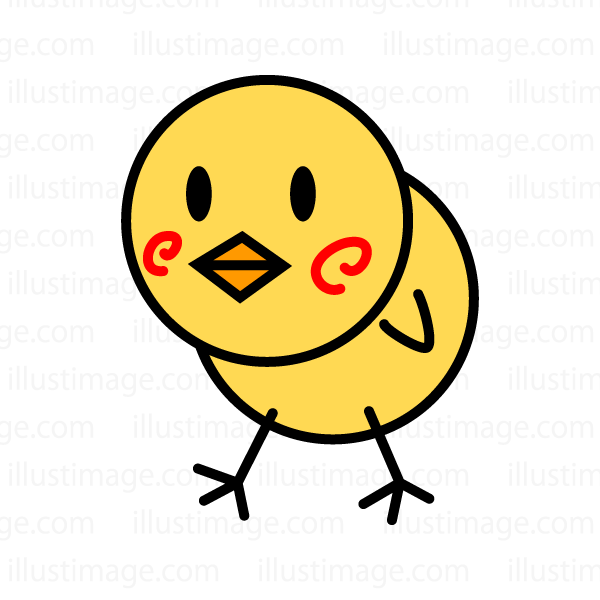 A cute loose character chick