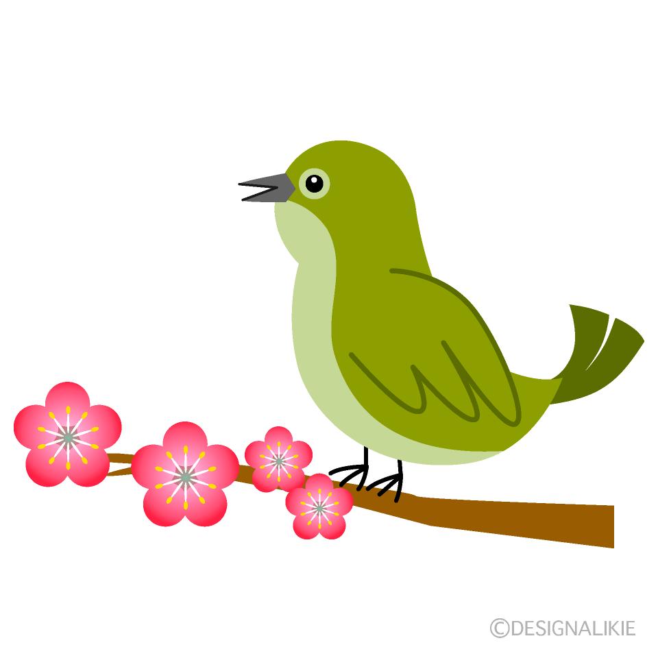 うぐいすと梅の木の無料イラスト素材イラストイメージ