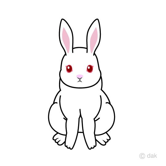 白ウサギの無料イラスト素材イラストイメージ