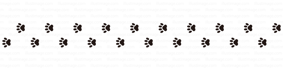 Dog's footprint line
