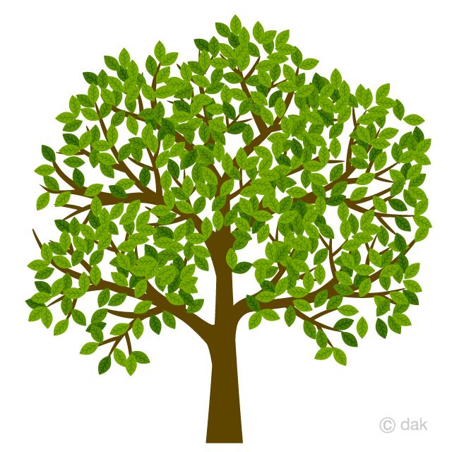 葉が繁る木の無料イラスト素材 イラストイメージ