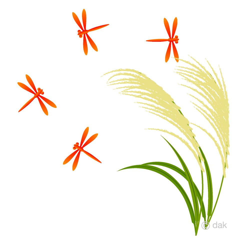 ススキと赤トンボの無料イラスト素材イラストイメージ