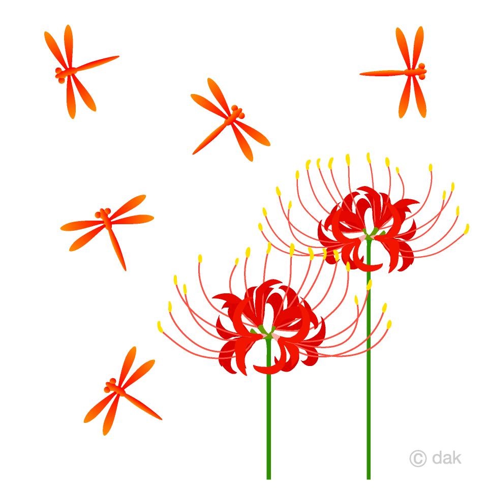 彼岸花と赤とんぼの無料イラスト素材イラストイメージ