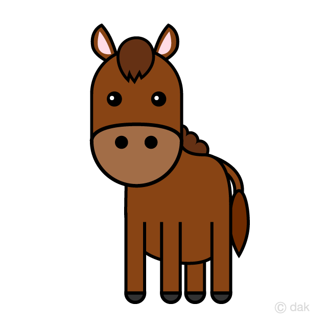 Cute horse seen from the front