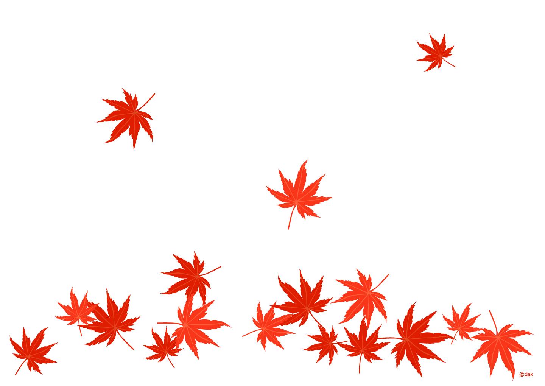 舞い落ちる紅葉の無料イラスト素材|イラストイメージ