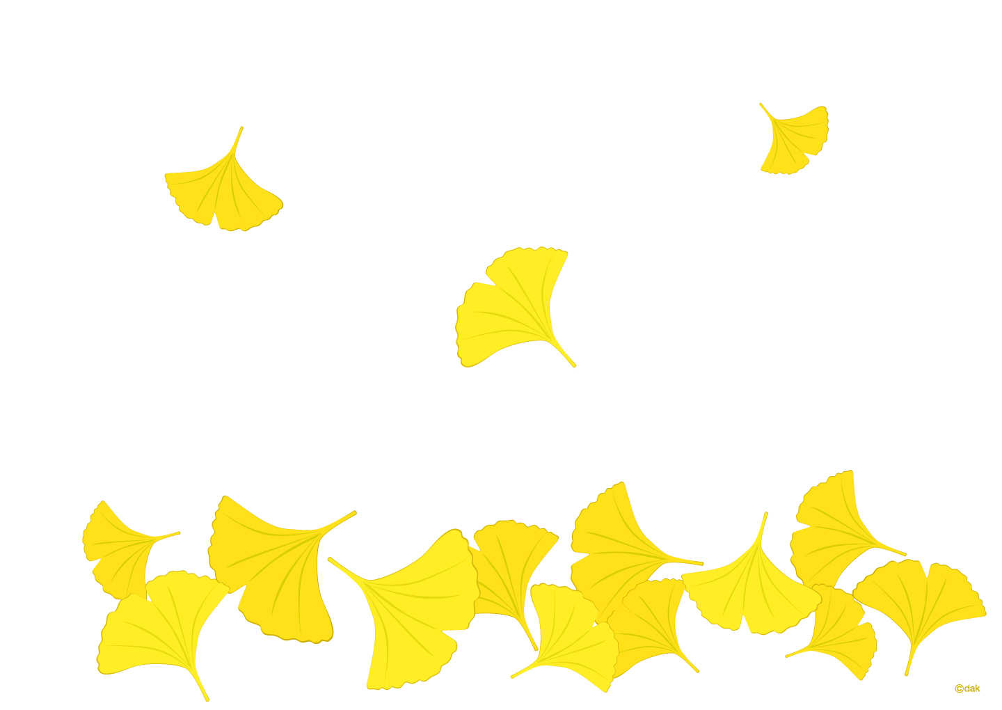 Ginkgo wallpaper
