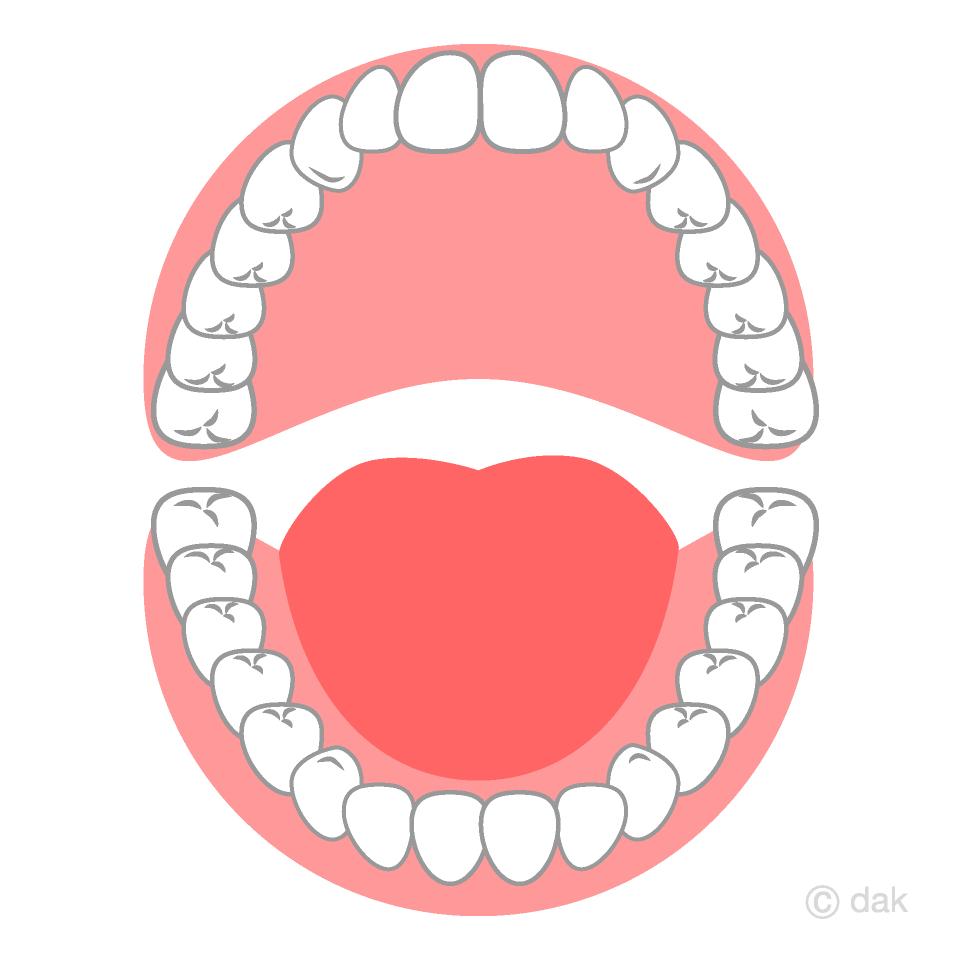 開いた口の歯の無料イラスト素材イラストイメージ