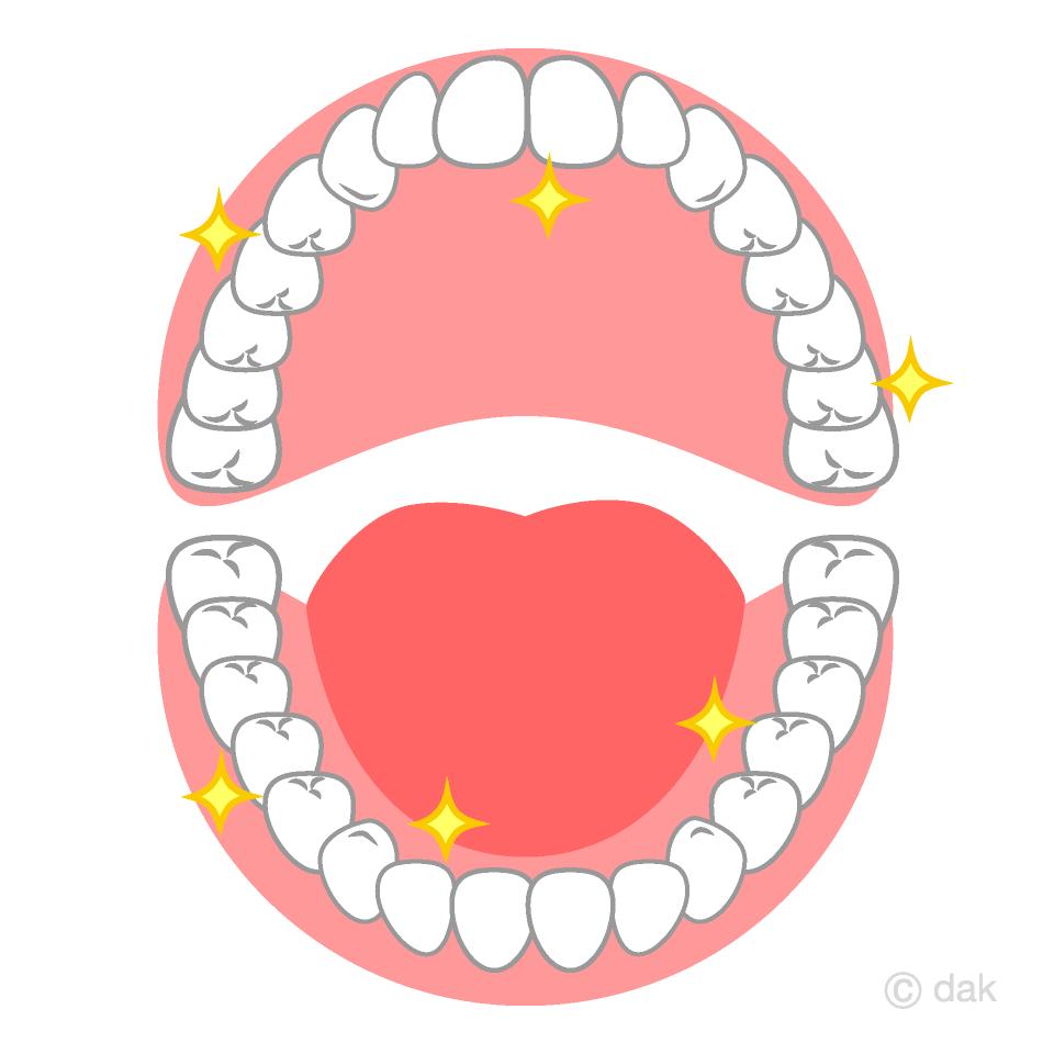 ピカピカの開いた口の歯の無料イラスト素材|イラストイメージ
